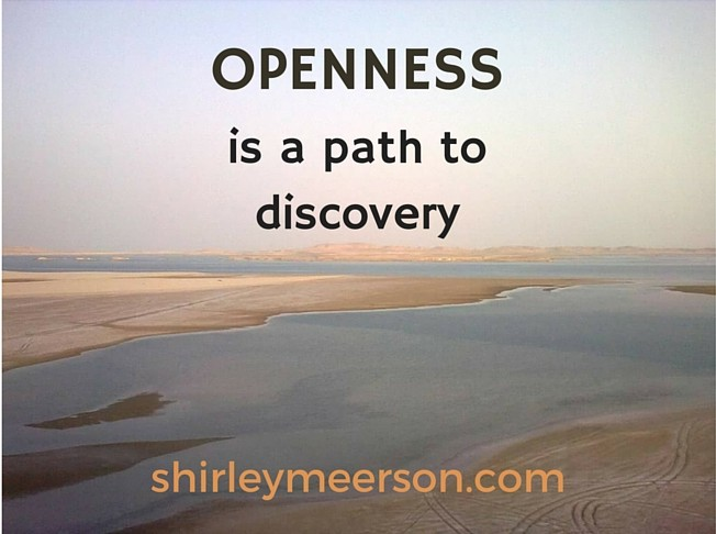 Shirley Meerson, Ageless Wellness Lifestyle Coach